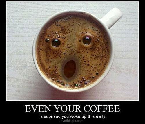 Dagens digt: Mens kaffen køler af